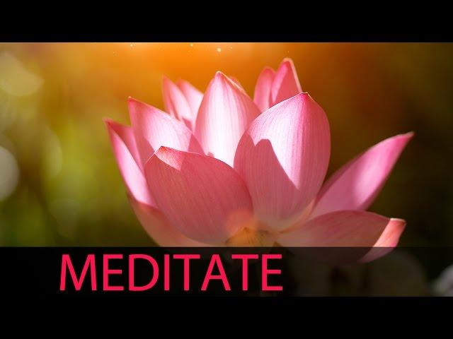 6 Hour Meditation Music: Background Music, Relaxing Music, Soft Music, Soothing Music ☯559