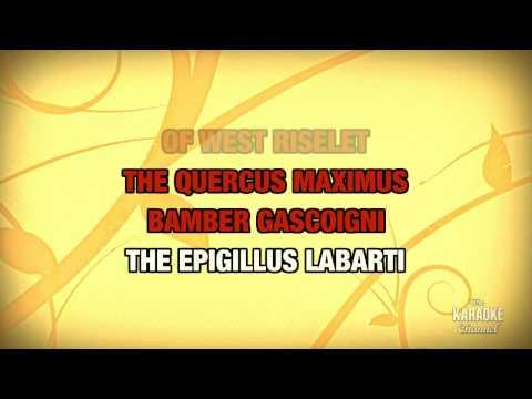 Lumberjack Song in the style of Monty Python   Karaoke with Lyrics