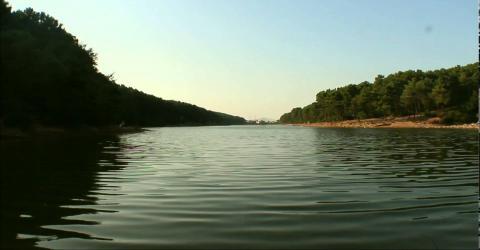 Doğa Sesleri - Summer Silent Lake