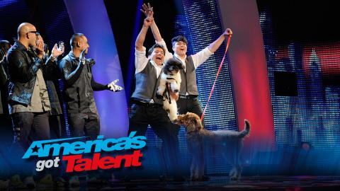 Next: Celebrating 10 Years of America's Got Talent! (Preview)