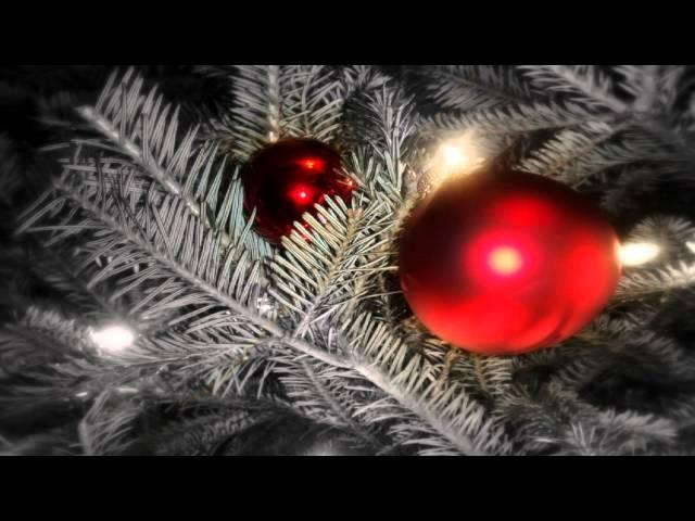 CHRISTMAS MUSIC - Jingle Bells Remix - Merry Christmas