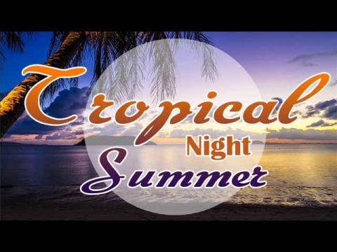 TROPICAL NIGHT SUMMER