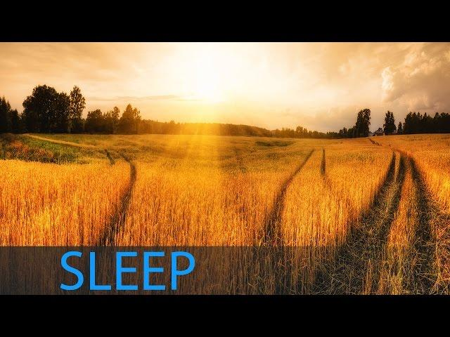 8 Hour Music for Sleeping and Deep Relaxation: Meditation